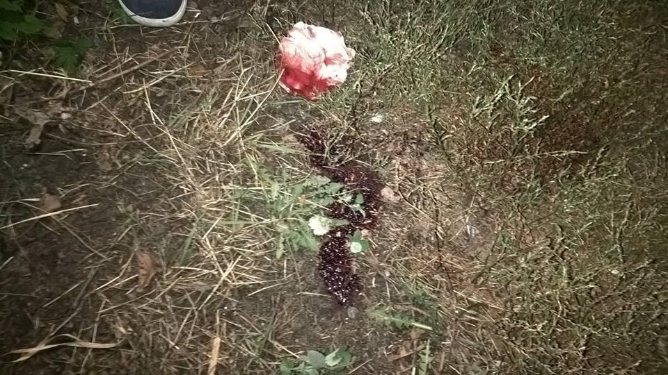 Під Києвом бійка підлітків закінчилася стріляниною - фото 2