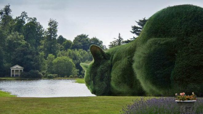 Британський художник увічнив свого кота... в кустах - фото 2