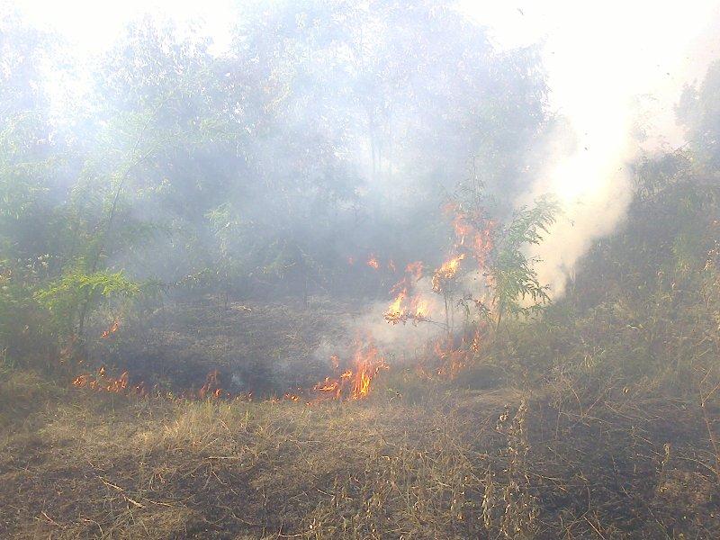 На Харківщині за добу сталося 13 пожеж - фото 2