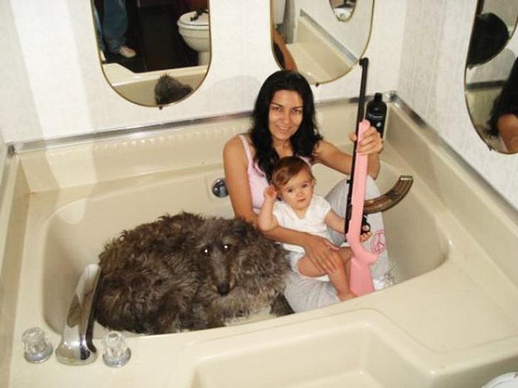 35 дуже дивних сімейних фото - фото 14
