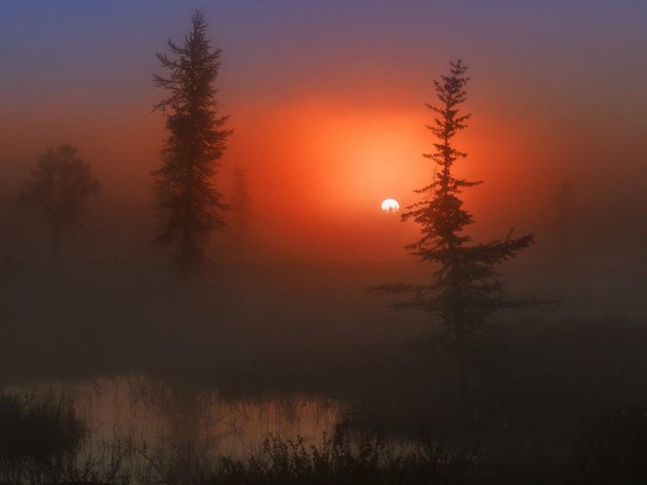 20 причин, за якими осінь набагато краще літа - фото 3