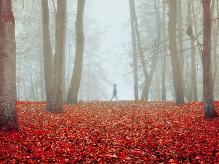 20 причин, за якими осінь набагато краще літа - фото 13