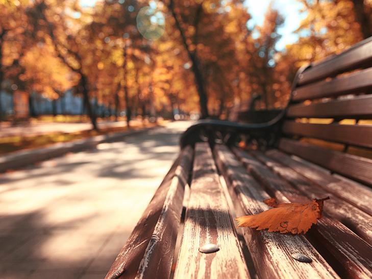 20 причин, за якими осінь набагато краще літа - фото 2