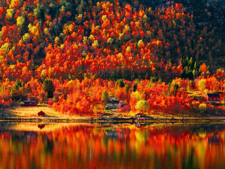 20 причин, за якими осінь набагато краще літа - фото 1