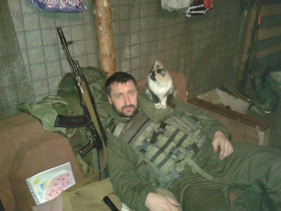 До Міжнародного дня котів: Як мурчики рятують Україну - фото 4
