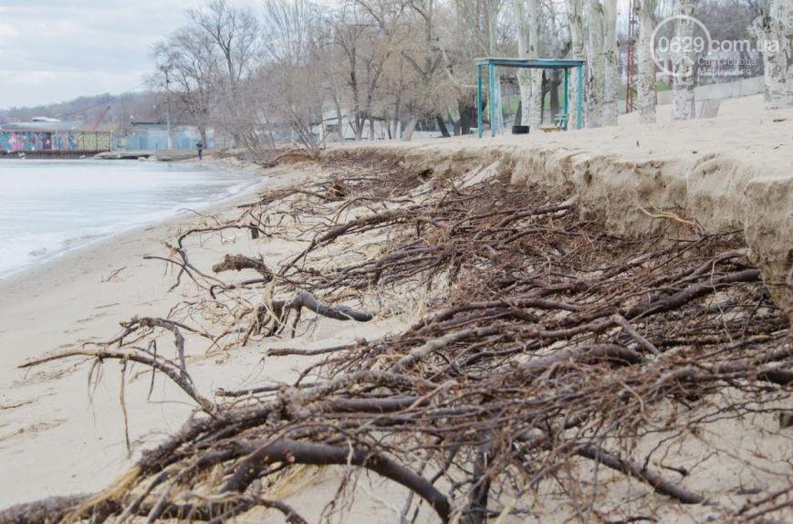 Маріуполем пройшовся потужний шторм: дерева вирвало з корінням (ФОТО) - фото 3