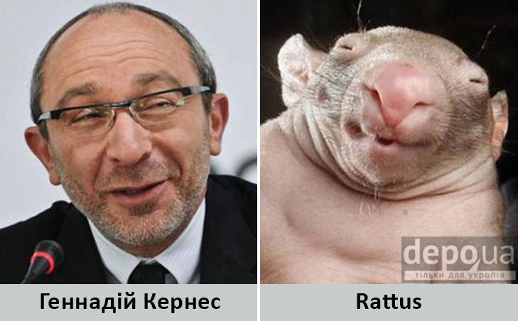 Політики та тварини: Які звіри сплять в Яценюкові, Ляшку і Парасюку - фото 3