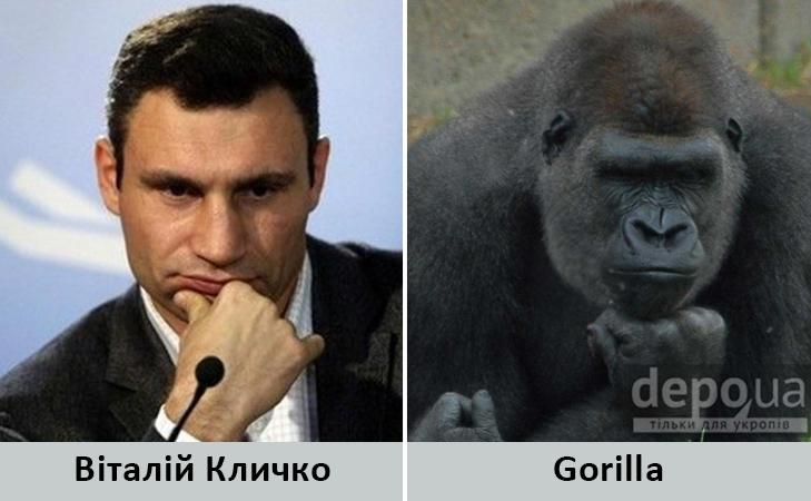 Політики та тварини: Які звіри сплять в Яценюкові, Ляшку і Парасюку - фото 13