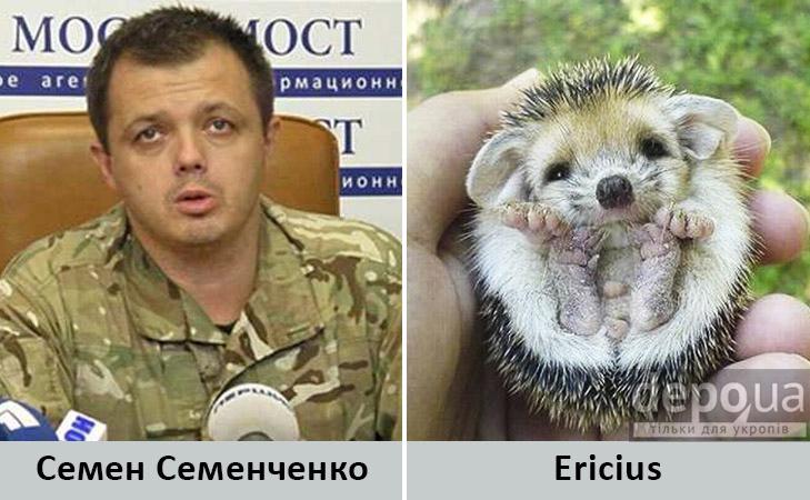 Політики та тварини: Які звіри сплять в Яценюкові, Ляшку і Парасюку - фото 9