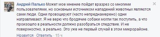 """Хтось натаскує тварин на агресію, - голова миколаївського департаменту ЖКГ про """"розірвання"""" жінки собакою"""