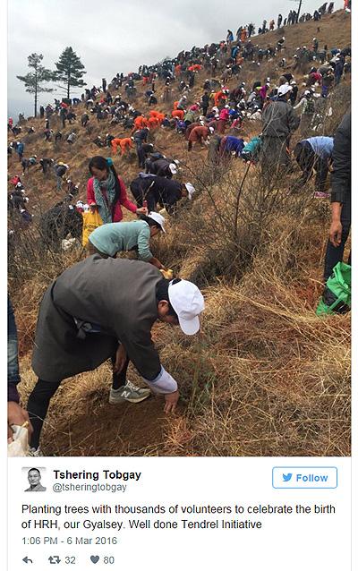 У Бутані через новонародженого принца, тисячі людей змушені саджати дерева  - фото 2