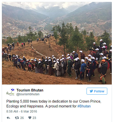 У Бутані через новонародженого принца, тисячі людей змушені саджати дерева  - фото 1