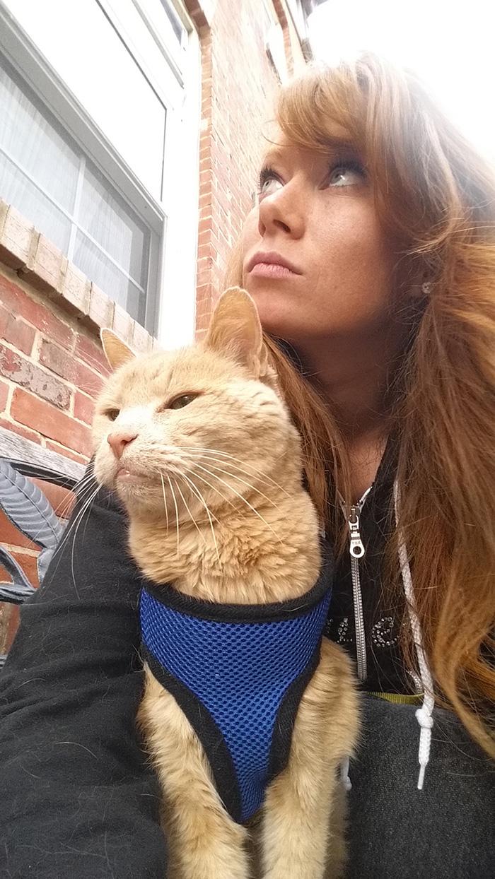 Як жінка врятувала 21-річного кота, взявши його з притулку - фото 2