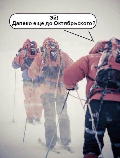 Як миколаївський сніг підірвав соцмережі (ФОТОЖАБИ) - фото 7