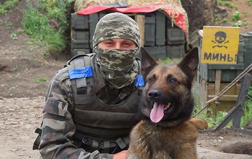 Чим займаються на Донбасі найкращі друзі бійців АТО - 6 - фото 4