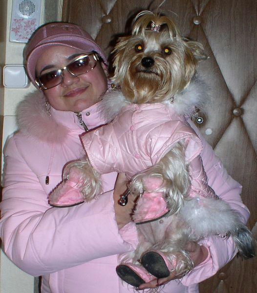 Холод собачий: ТОП-20 собак у зимовому одязі - фото 6