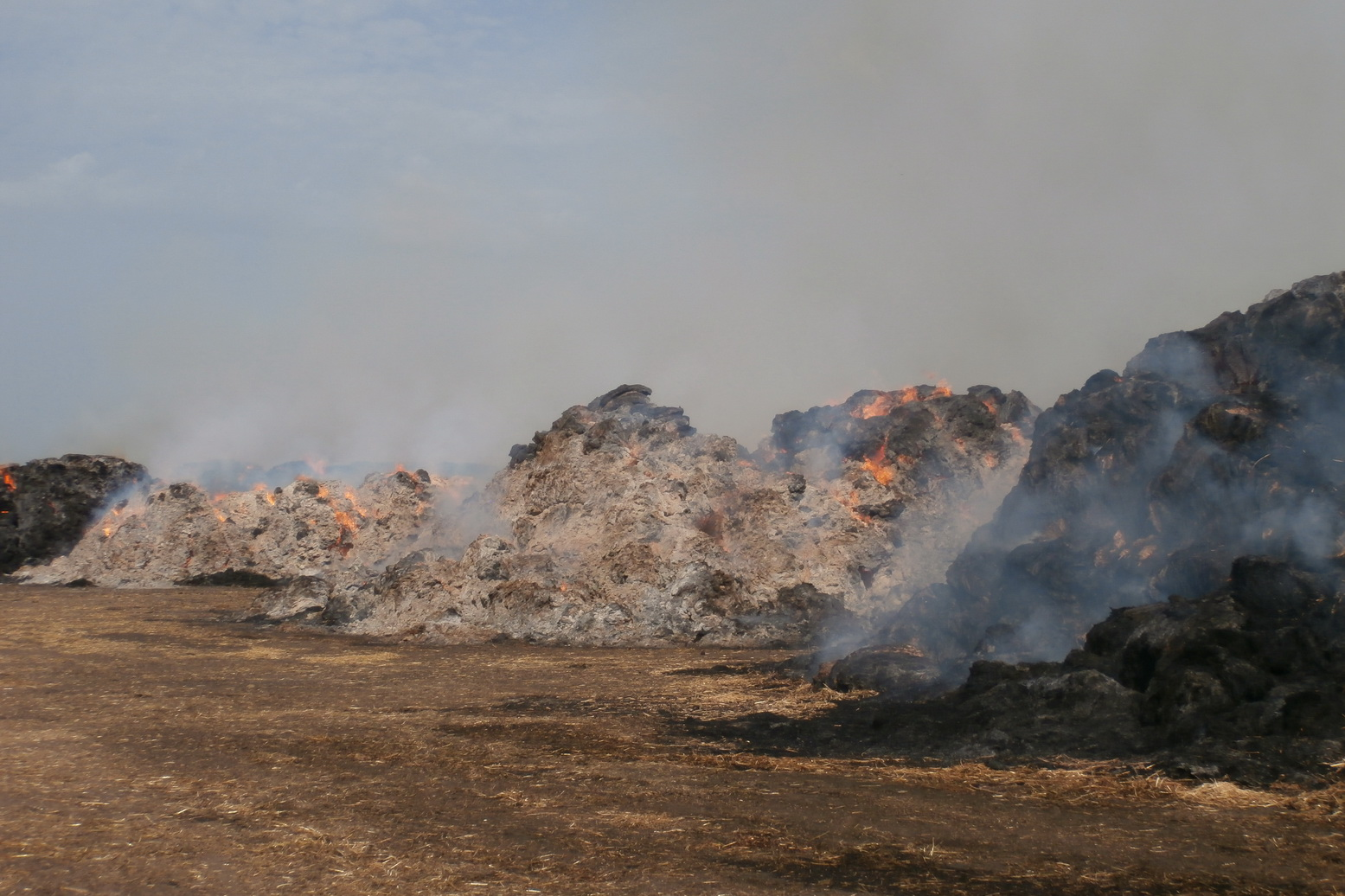 Під Харковом сталася масштабна пожежа - фото 1
