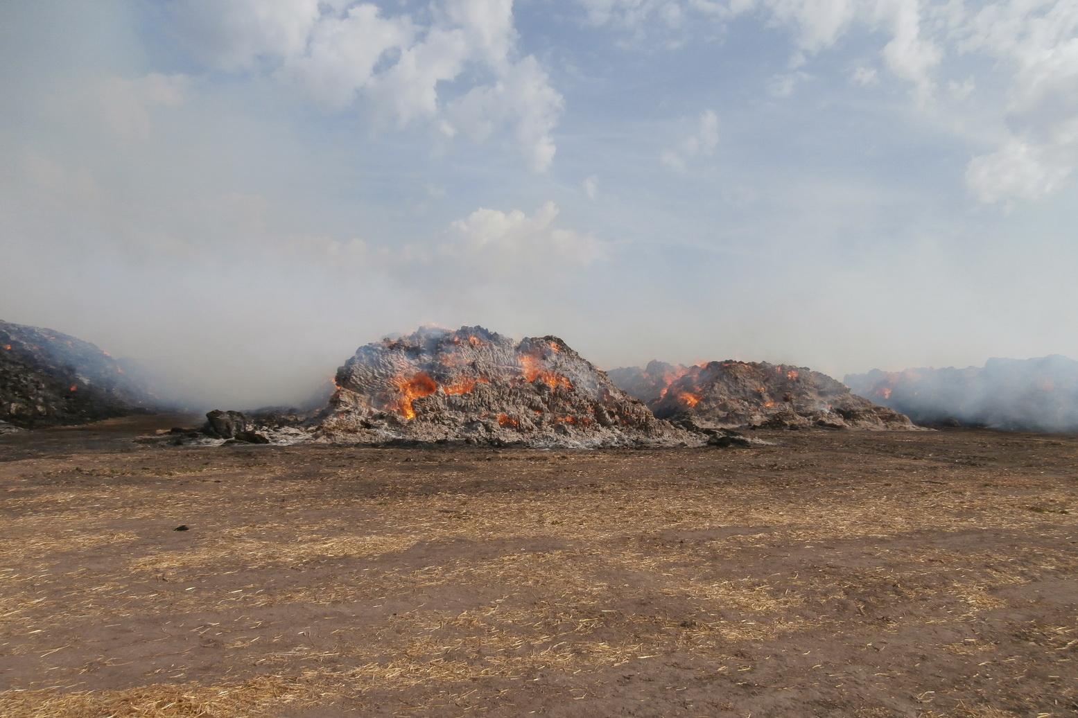 Під Харковом сталася масштабна пожежа - фото 2
