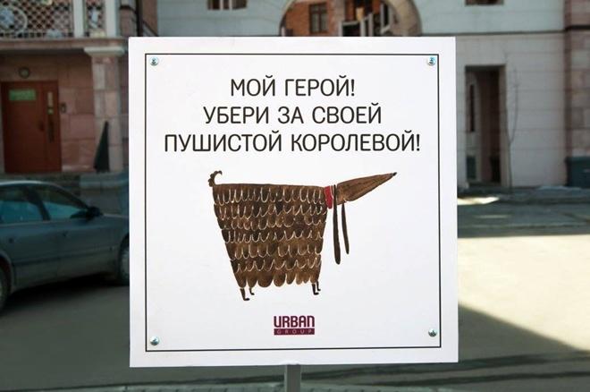 На Росії домашні тварини виховують своїх власників - фото 1
