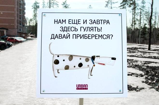 На Росії домашні тварини виховують своїх власників - фото 6