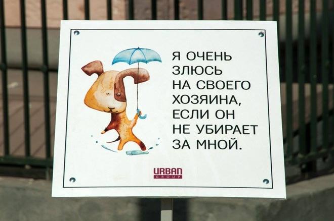На Росії домашні тварини виховують своїх власників - фото 7
