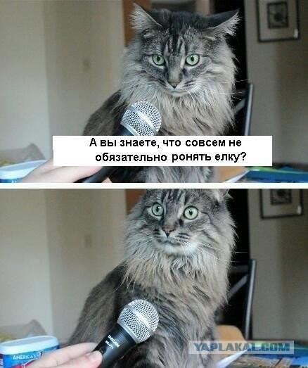Як захистити ялинку від дитини та кота - фото 1