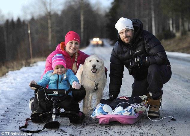 Як собака, якого знайшли на Амазонці, святкує перше Різдво у Швеції - фото 1