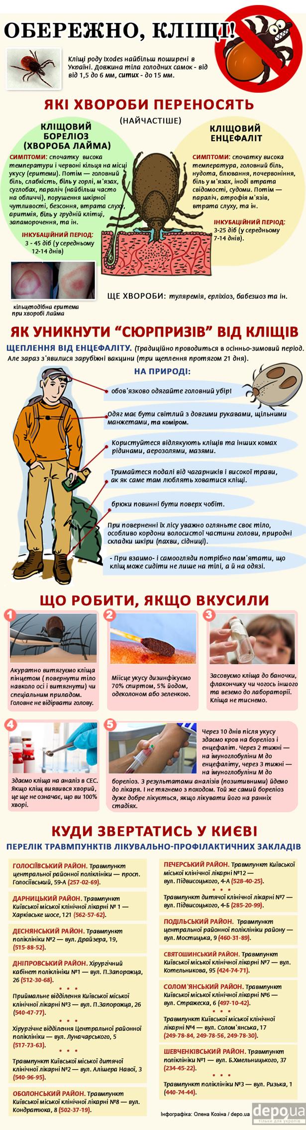 Як правильно уникати кліщів (ІНФОГРАФІКА) - фото 1