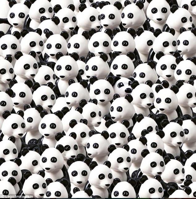 Знайди серед купи панд собаку - фото 1