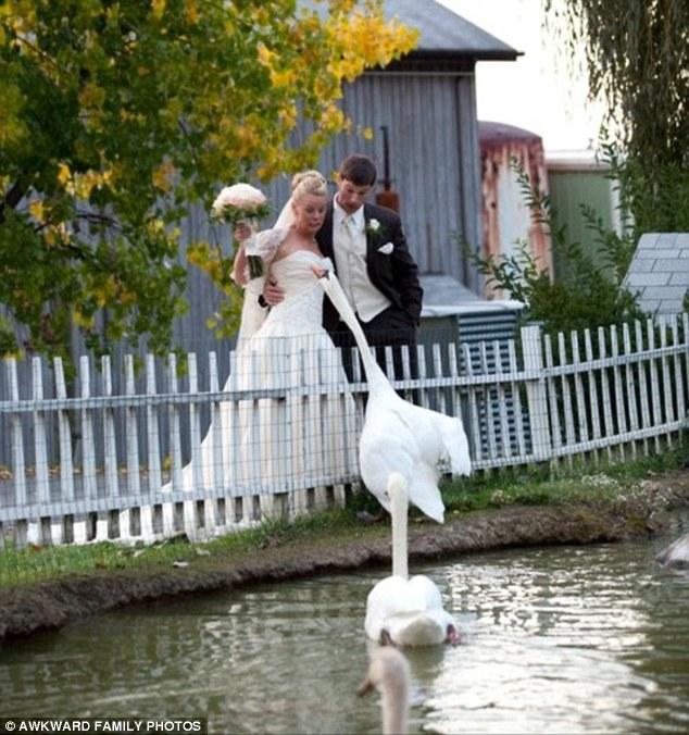 Найжахливіші весільні фотографії у світі - фото 3