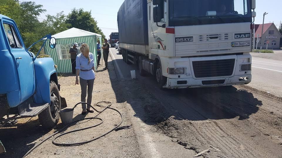 На Миколаївщині через поширення чуми свиней можуть оголосити надзвичайний стан - фото 1