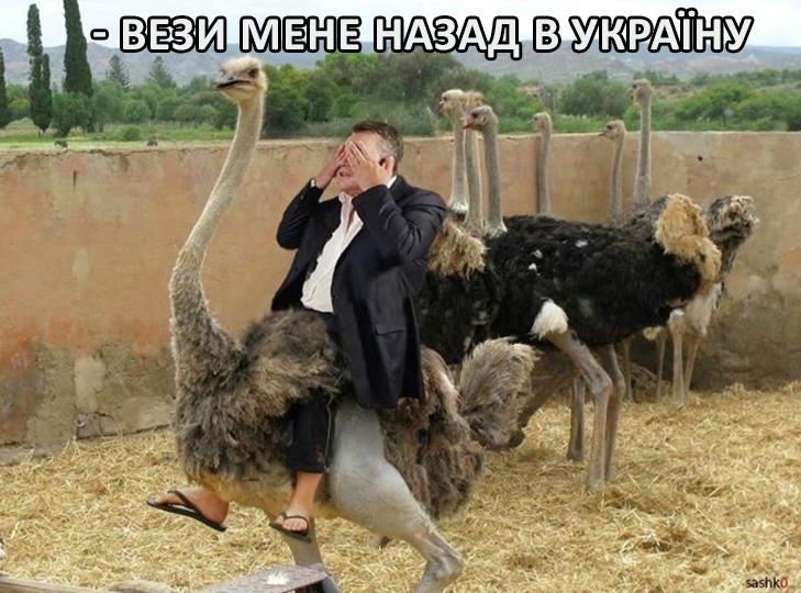 Астанавітєсь! Янукович повертається! (ФОТОЖАБИ) - фото 7