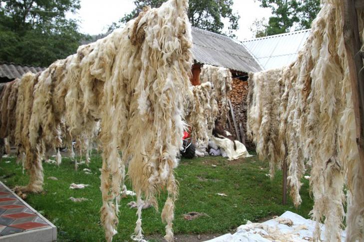 Подорожі Україною: Топ-10 найцікавіших сіл у Карпатах - фото 8