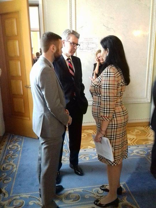 У Раду на розмову до Гройсмана прийшов американський посол - фото 1
