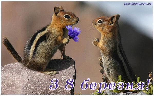 ТОП-10 укропських привітань і приколів до 8 березня - фото 1