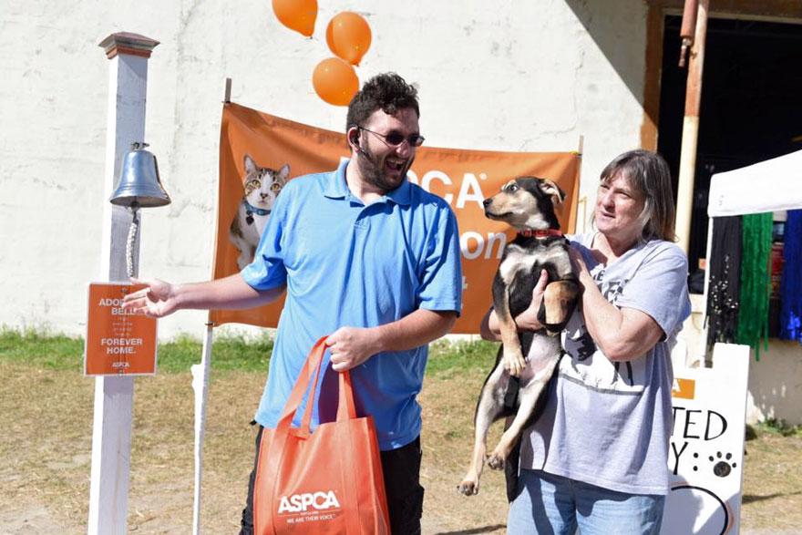 Як 520 котів і собак знайшли новий дім на вечірці - фото 2