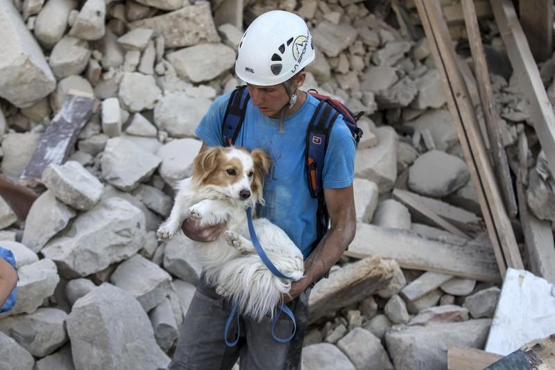 Італійський землетрус - фото 7