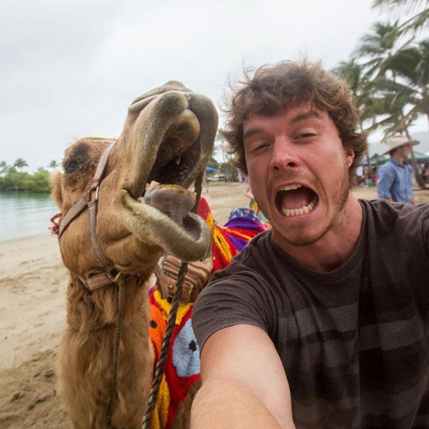 Інтернет підірвав красень, який робить надзвичайні селфі з тваринами  - фото 4
