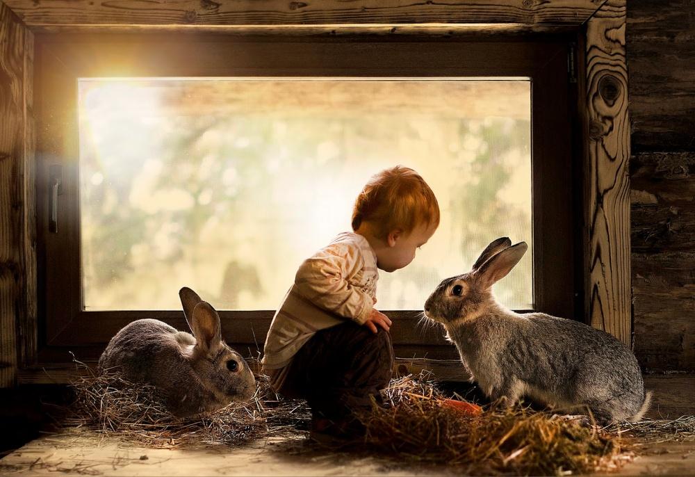 Коли слова зайві: як діти спілкуються з тваринами  - фото 14