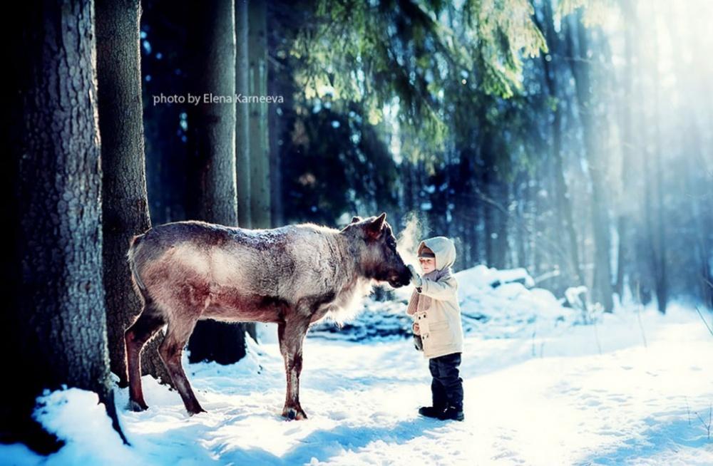 Коли слова зайві: як діти спілкуються з тваринами  - фото 13