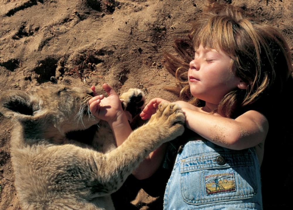 Коли слова зайві: як діти спілкуються з тваринами  - фото 12