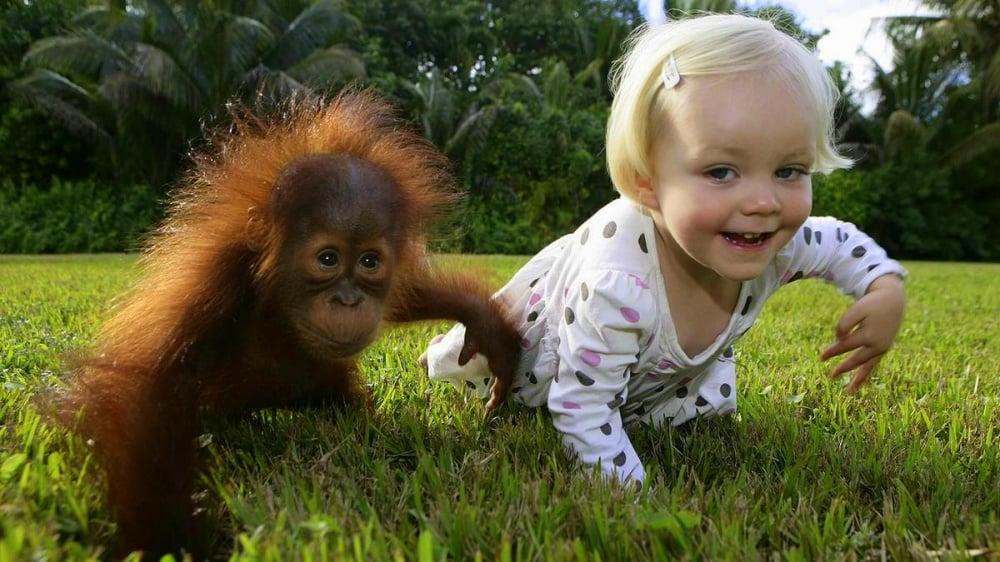 Прикольные фото для детей животных