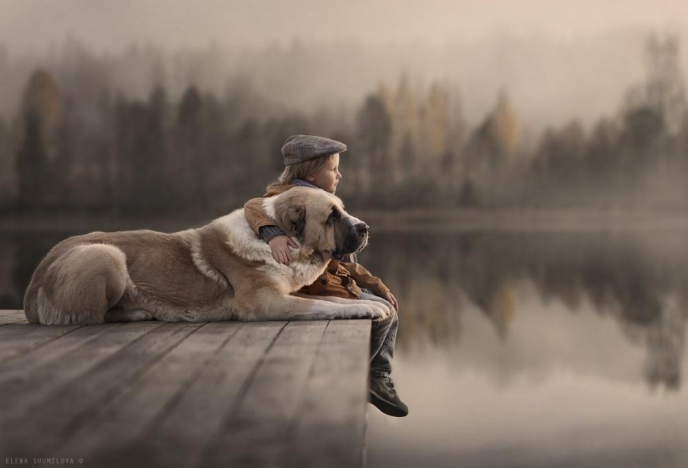 Коли слова зайві: як діти спілкуються з тваринами  - фото 7
