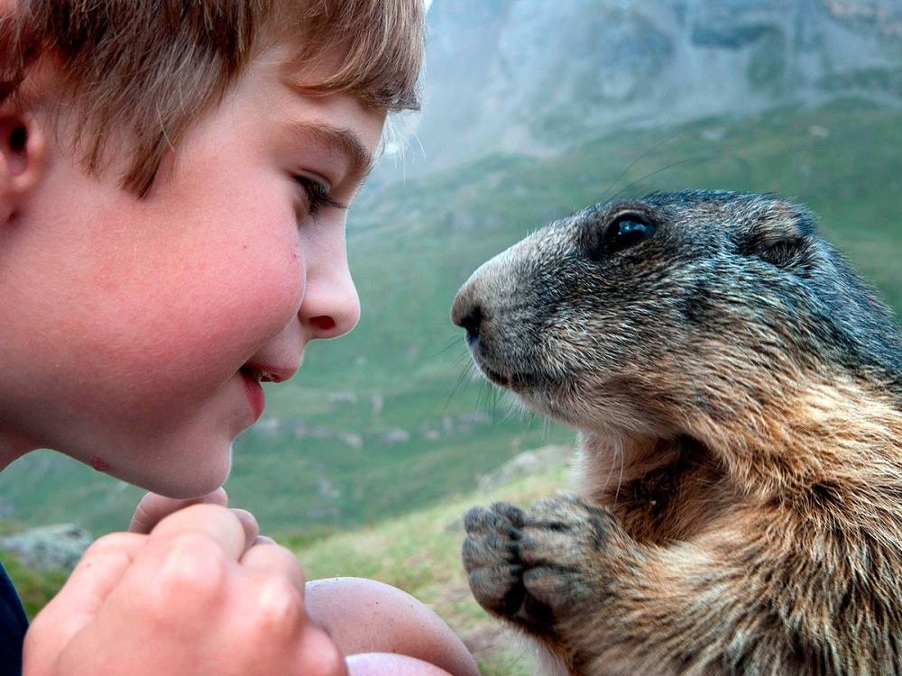 Коли слова зайві: як діти спілкуються з тваринами  - фото 5