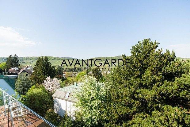 Азвров-молодший продає будинок в Австрії - фото 3