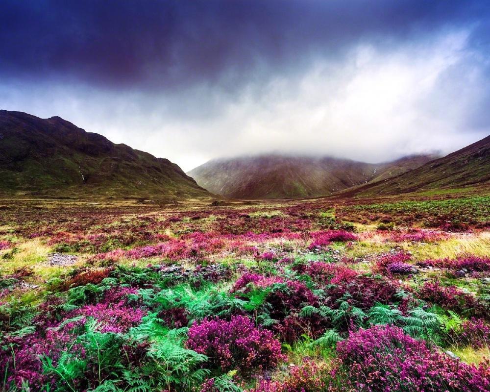 Як виглядає неймовірно казковий острів у Шотландії - фото 9