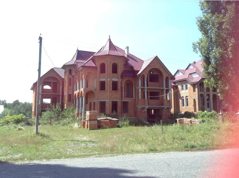 Столичні гості шоковані закарпатськими сільскими маєтками на 40 кімнат - фото 2