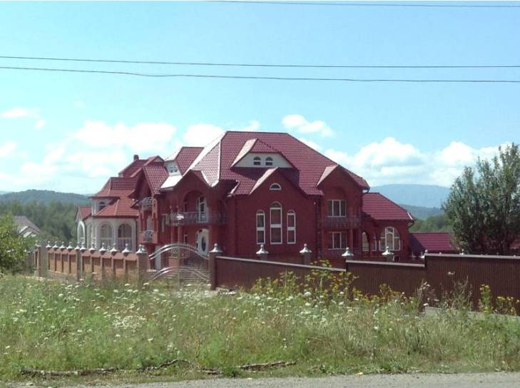 Столичні гості шоковані закарпатськими сільскими маєтками на 40 кімнат - фото 3