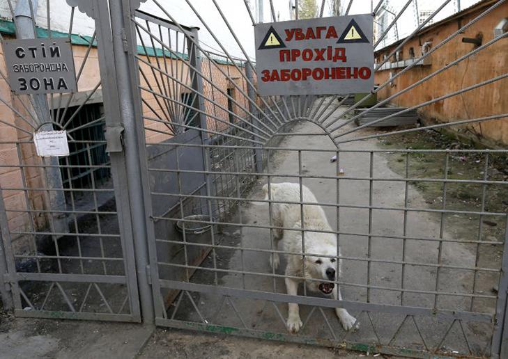 Чому з головної тюрми України потрібно зробити музей - фото 2