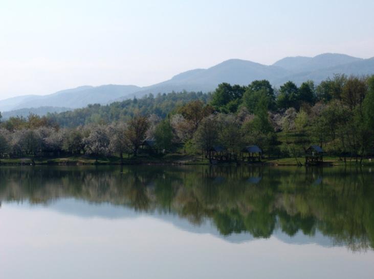 П'ять озер Закарпаття: Чому інколи варто відмовитись від моря - фото 5